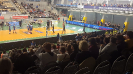 Volleyball 2019